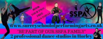 Surrey School Of Performing Arts